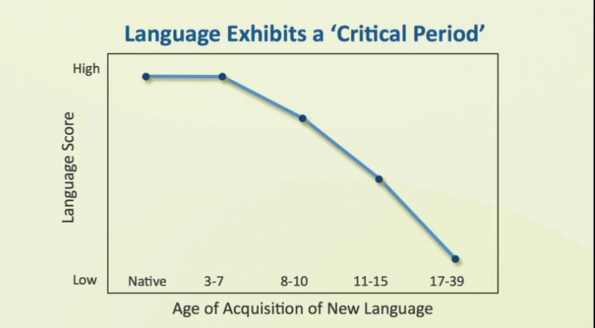 Periodo critico dell'apprendimento linguistico